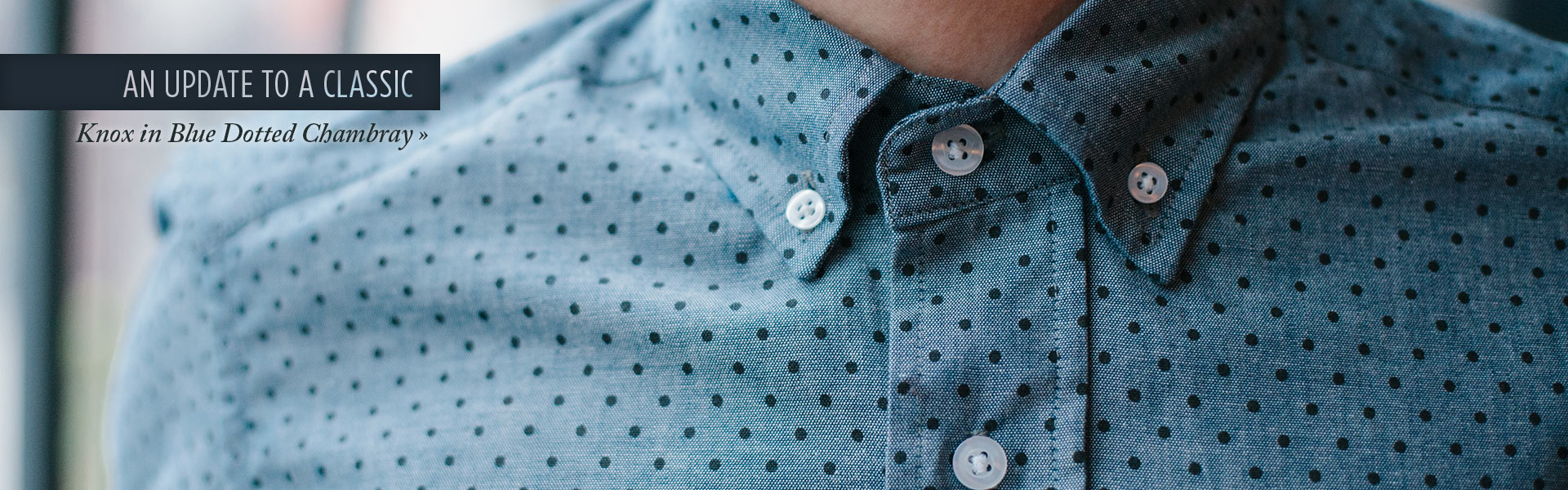 Knox in Blue Dotted Chambray